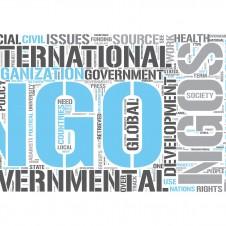 NGO's w Lublinie
