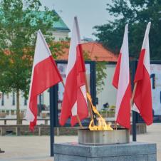 Czy uczestniczyłeś kiedykolwiek w obchodach Święta Wojska Polskiego w Lublinie?