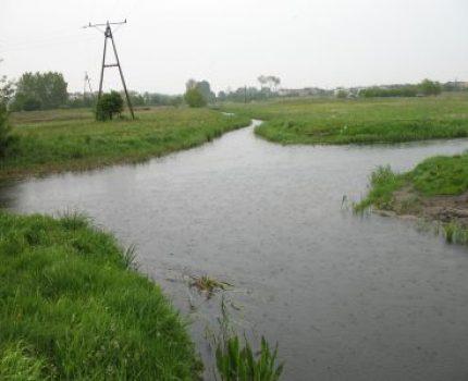 37-Bifurkacja-skrzyzowanie-rzek-Wagrowiec-12-05-2007